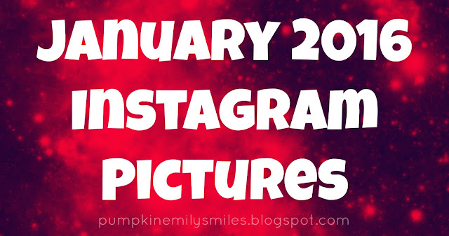 January 2016 Instagram Pictures