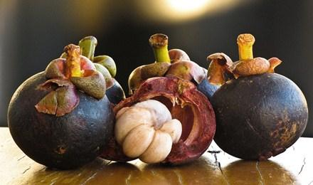 Kulit dan daging buah manggis sama-sama berkhasiat