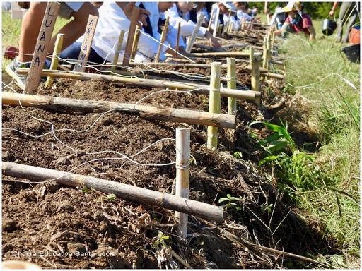 En este grupo cada niño trabajará su porción de tierra - Chacra Educativa Santa Lucía