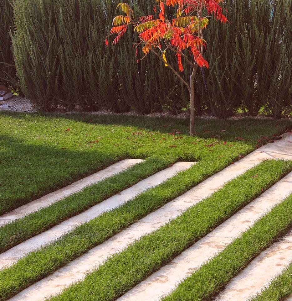 Alee moderna minimalista - Bucuresti gradina design simplu - Amenajari gradini Peisagist Alexandru Gheorghe