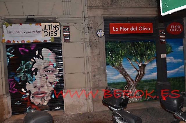 graffiti en persianas cara flores