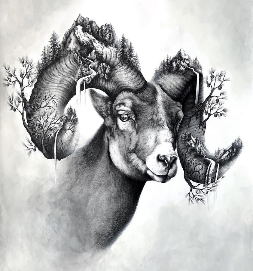 07-Ram-2-Alyse-Dietel-Animal-Drawings-Surrealism-www-designstack-co
