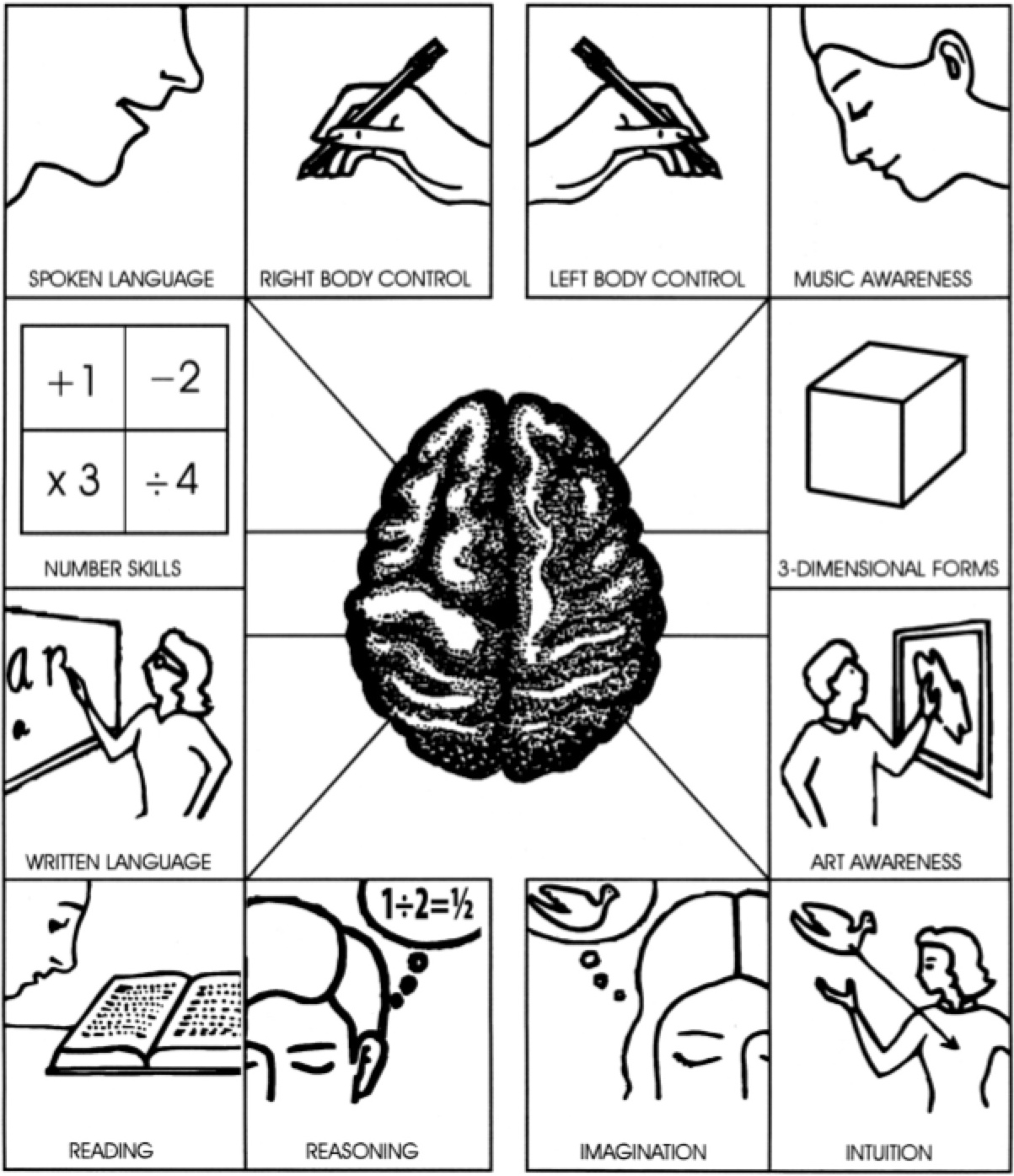 Images About Right Left Brain