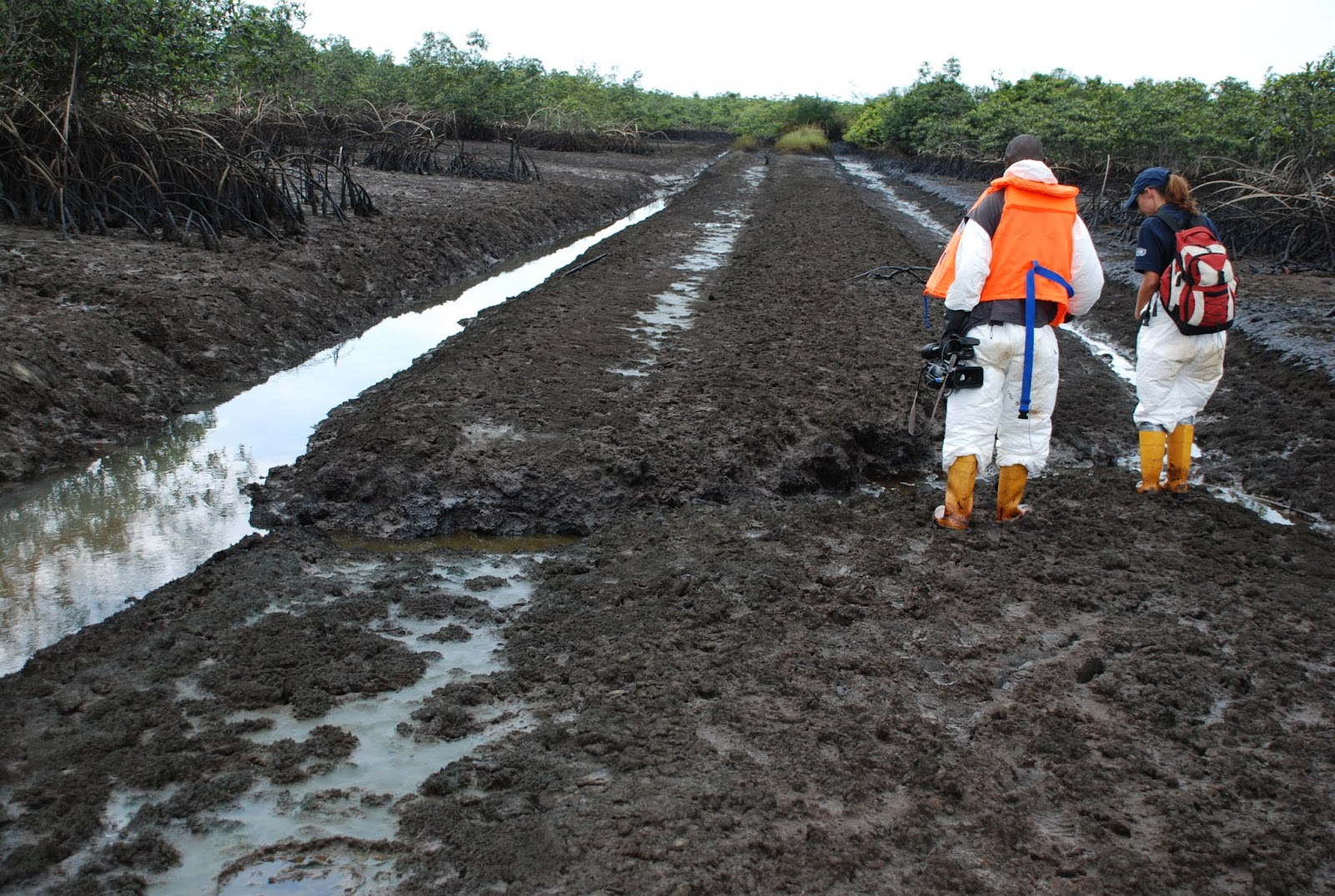 The Federal Government on Wednesday opened a fresh bid to select contractors to provide portable water in oil spill impacted Ogoni communities in Rivers. Dr Marvin Dekil, the Project Coordinator, Hydrocarbon Pollution Remediation Project (HYPREP) said at the opening of the bid in Port Harcourt that the Project was initiative of the UN Environment Programme […]