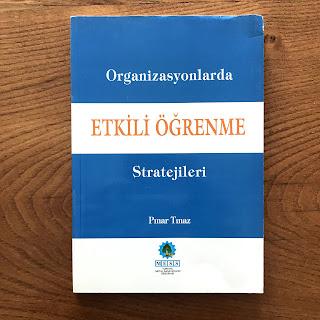 Organizasyonlarda Etkili Ogrenme Stratejileri