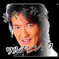 WARUMEN Chef'S Sticker