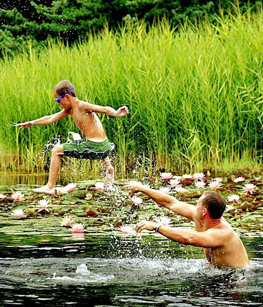Wildlife Pond Surrounded By Pebbles: Aquascape Your Landscape: Ponds Aren't Just For Fish