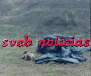 Hallan bolsas con restos humanos en carretera Omealca Veracruz