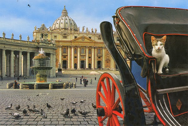 st peters square rome