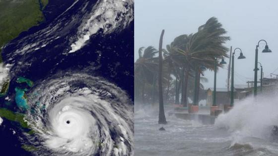 شاهد إعصار إيرما مباشرة