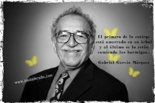 """""""El primero de la estirpe está amarrado en un árbol y al último se lo están comiendo las hormigas."""" Gabriel García Márquez"""
