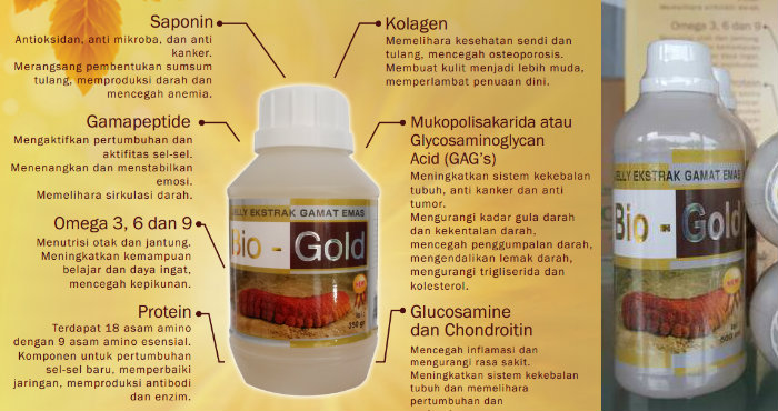Jelly Gamat Bio Gold 500 ml