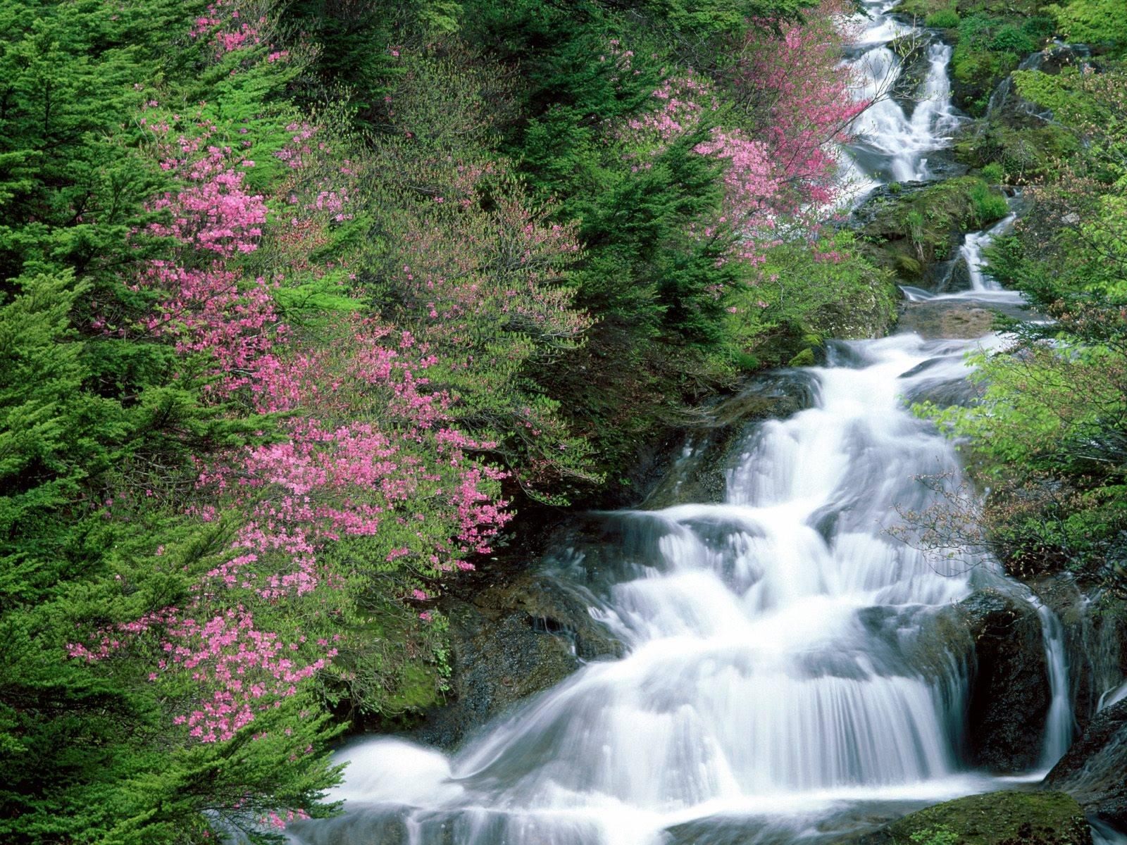 Free Wallpaper Download: Waterfalls Wallpaper And Desktop
