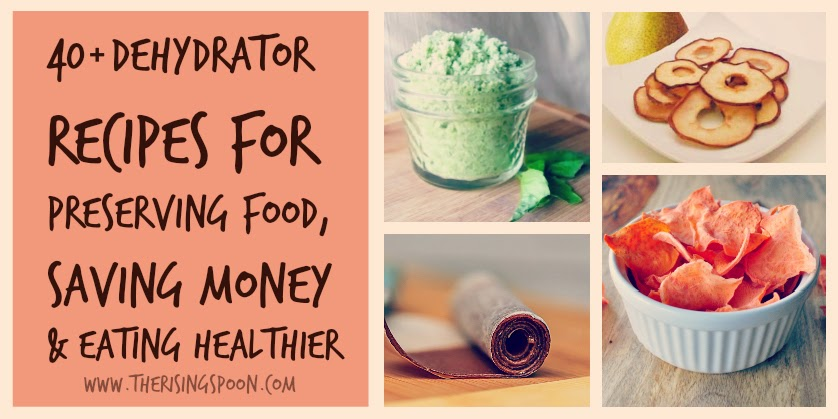 40 Dehydrator Recipes For Preserving Food, Saving Money & Eating Healthier