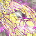 Revelada capa do 12 volume de Next Dimension!