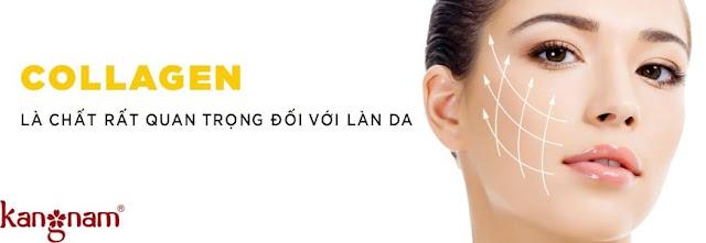 Collagen giúp quyết định độ mạnh khỏe của da
