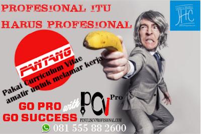 Jasa Pembuatan CV Profesional untuk Profesional Sejati