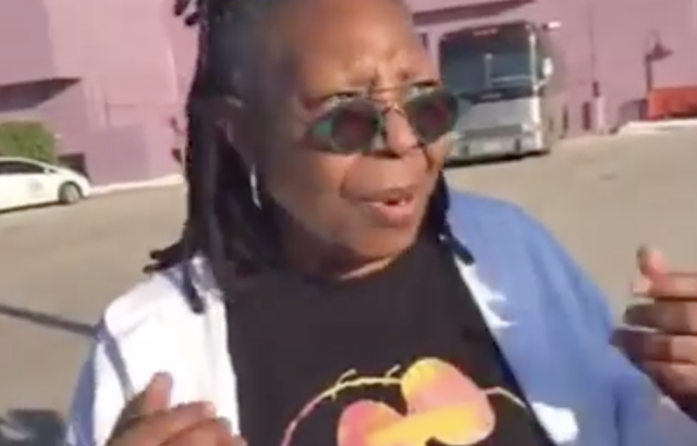 Whoopi Goldberg Comes Out to Meet MAGA Protesters at Florida Event, Peaceful Debate Follows (Video)