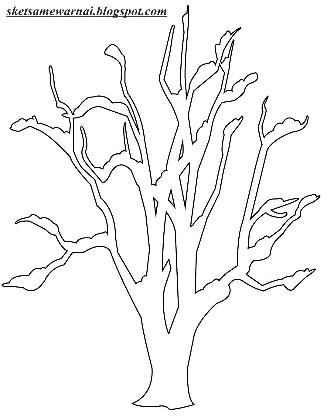 Kumpulan Gambar Mewarnai Pohon
