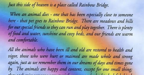 It's just a picture of Rainbow Bridge Printable throughout cat
