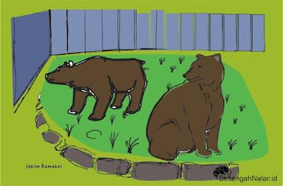 Menjadi Sepasang Beruang Di Kebun Binatang