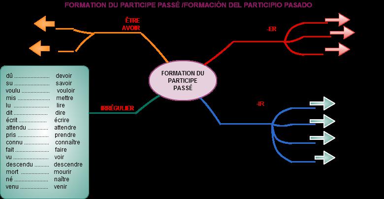 Carte Mentale Accord Du Participe Passe.Mestre A Casa Blog