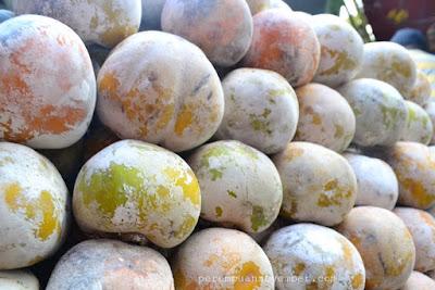 buah khas tanah karo berastagi