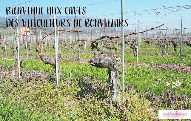 http://www.sweetmignonette.com/2017/04/cave-bonvillars-produit-terroir-vin.html