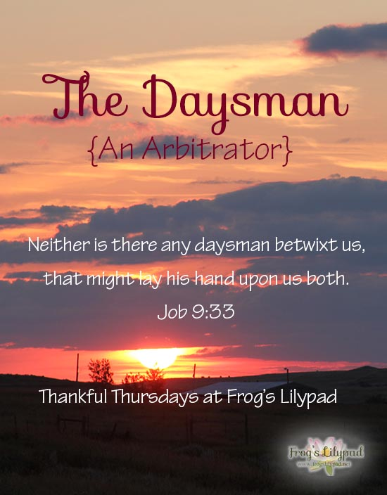 The Daysman {An Arbitrator} Job recognized a need for someone to stand on his behalf with God. With Jesus Christ, we have The Daysman arbitrating on our behalf. frogslilypad.net