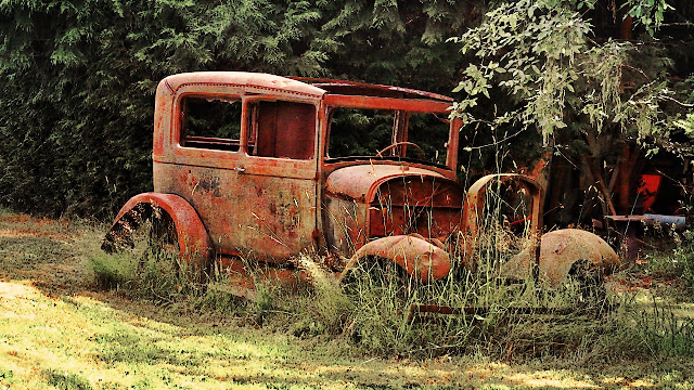 An ancient relic in a Metchosin, BC yard...
