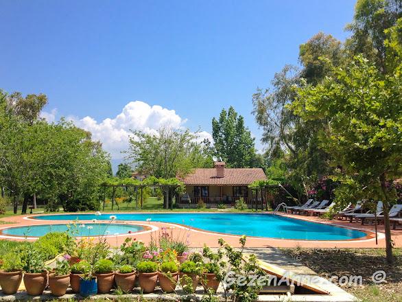 otelin havuzu ve çift kişilik superior odaları, Yonca Lodge fethiye