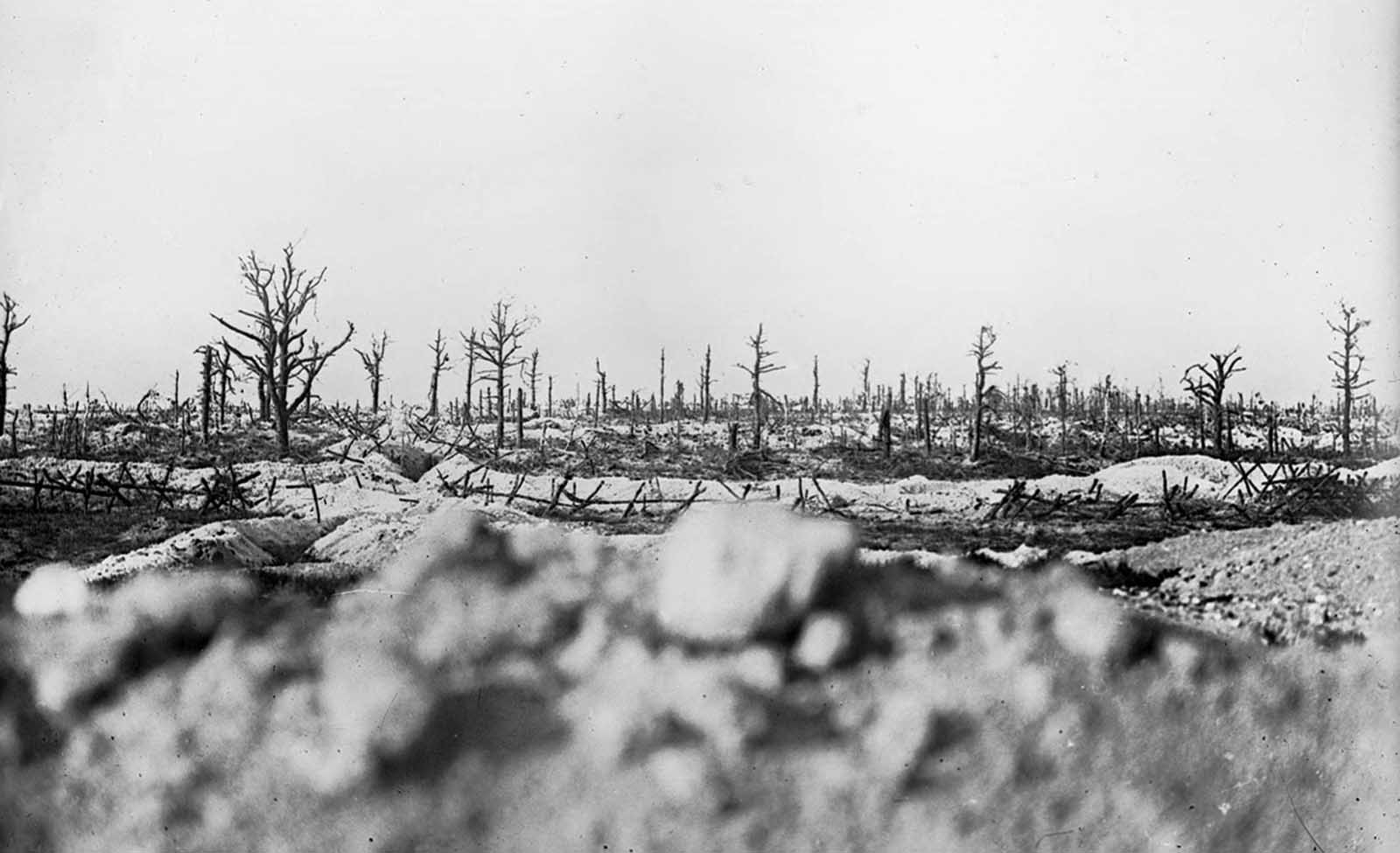 Battlefield in the Marne between Souain and Perthes, 1915.