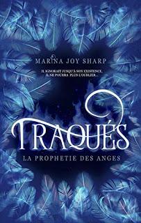 https://lesreinesdelanuit.blogspot.com/2018/10/la-prophetie-des-anges-t1-traques-de.html