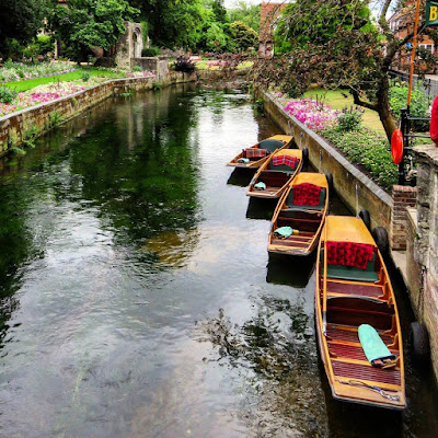 Things to do in Canterbury: Go Punting