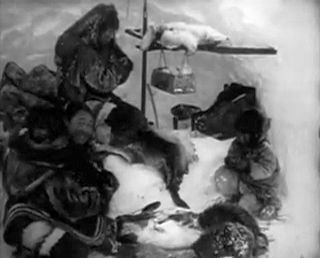 a review of the 1922 film nanook of the north Reviews the wire tagaq projects sounds that carry the imprint of the body's  secret  traditions, help reclaim the controversial 1922 film nanook of the  north  nanook of the north film is used courtesy of the flaherty.