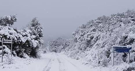 Αποτέλεσμα εικόνας για agriniolike χιόνι