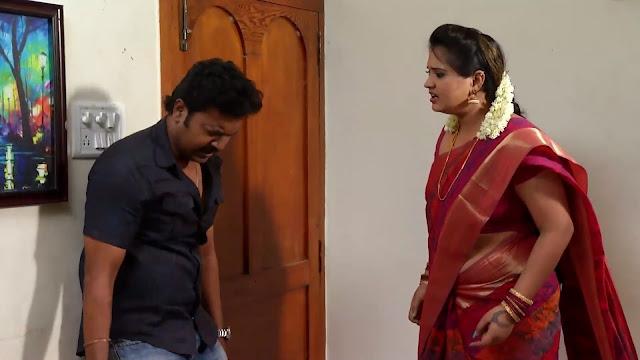 Tamil Serial Actress Sexy Navel Sideview In Saree -Sa