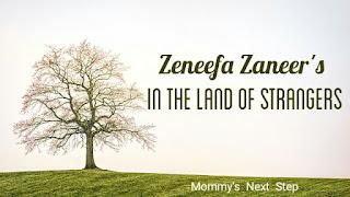 Zeneefa-zaneer