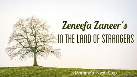 Zeneefa Zaneer's 'In the Land of Strangers'