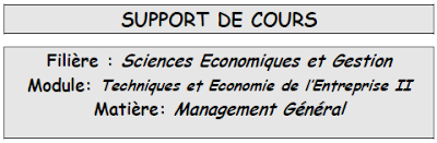 cours de management general s2 pdf