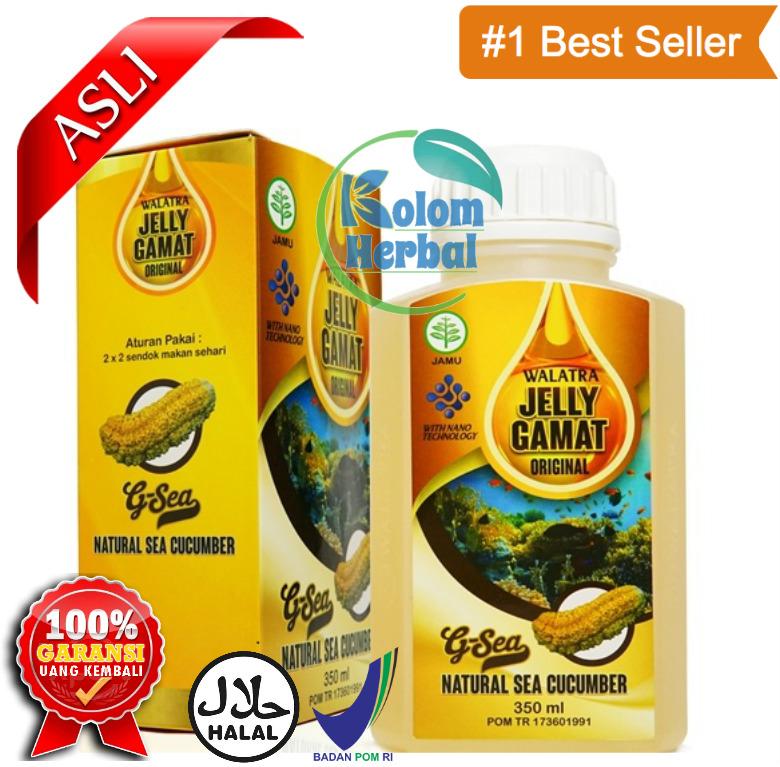 Walatra Jelly Gamat G-Sea Original
