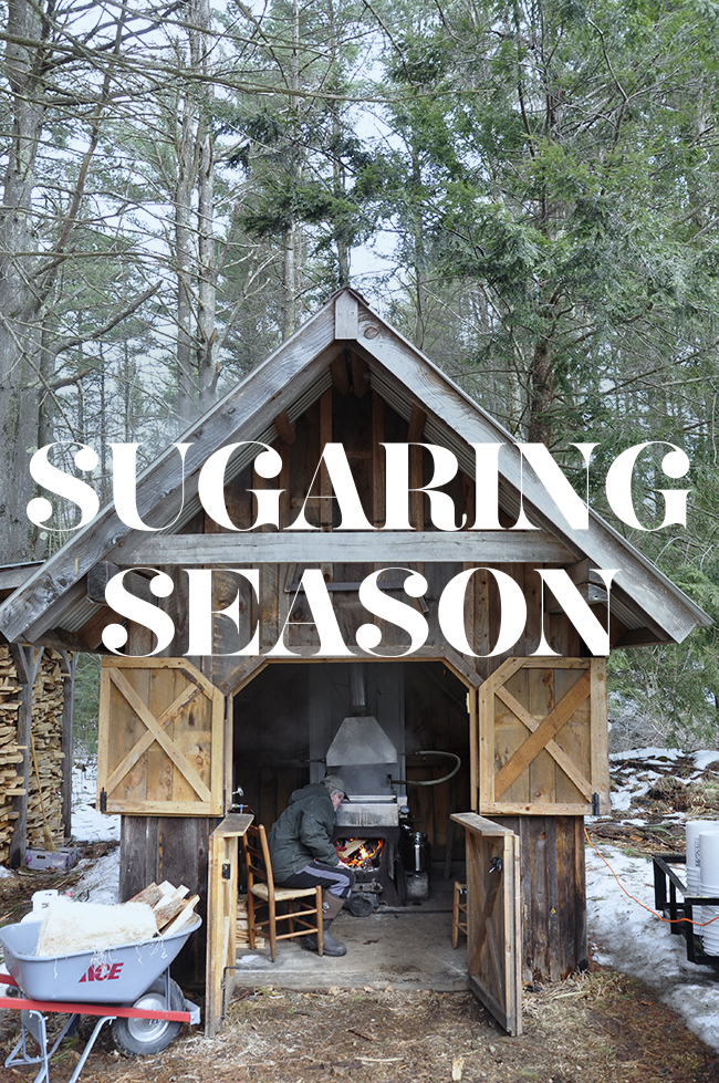 The Art and Craft of Maple Sugaring with the folks from MapleMama