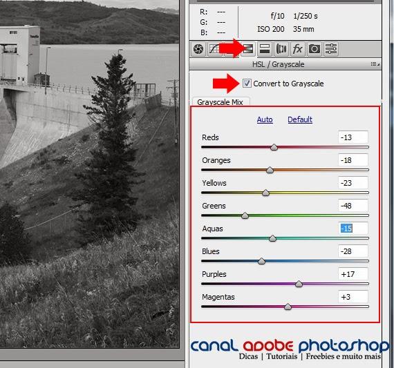 Efeito Sépia no Filtro Camera RAW Photoshop CC | Canal Adobe Photoshop