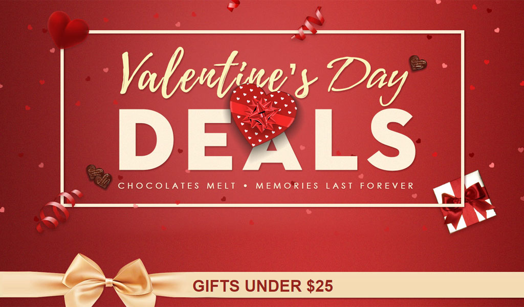 Best Valentines Day Gadget Gift Ideas under USD 25