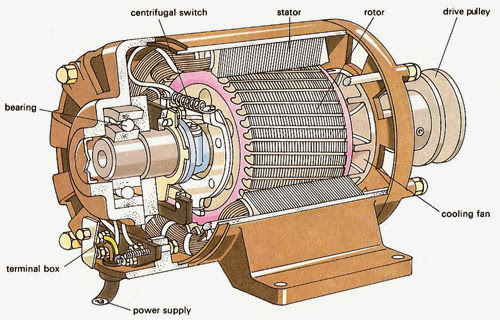 How does a Three Phase Induction Motor Works? | StudyElectrical ...