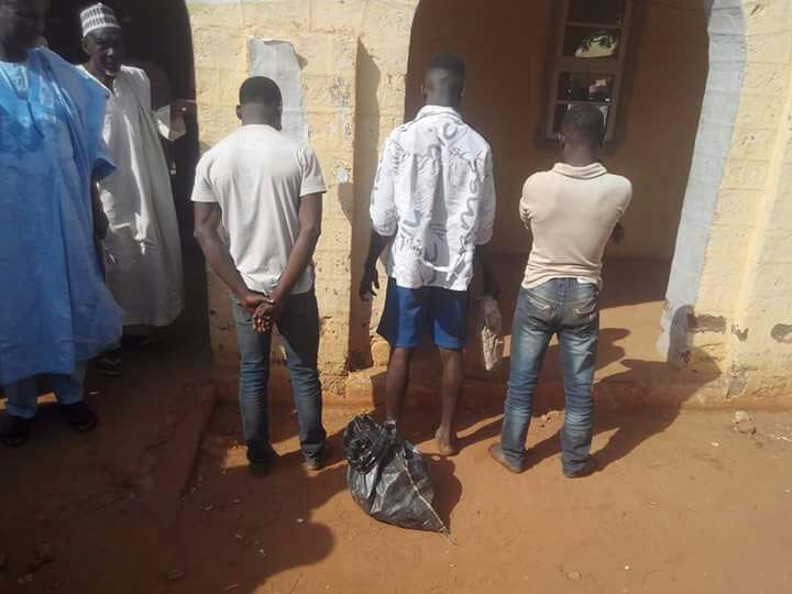 Three boys nabbed for selling decayed meat in Sokoto