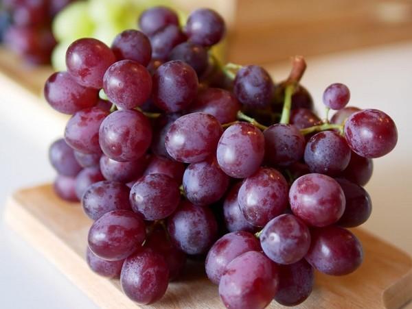 Aliments Interdits aux Chiens - Raisins