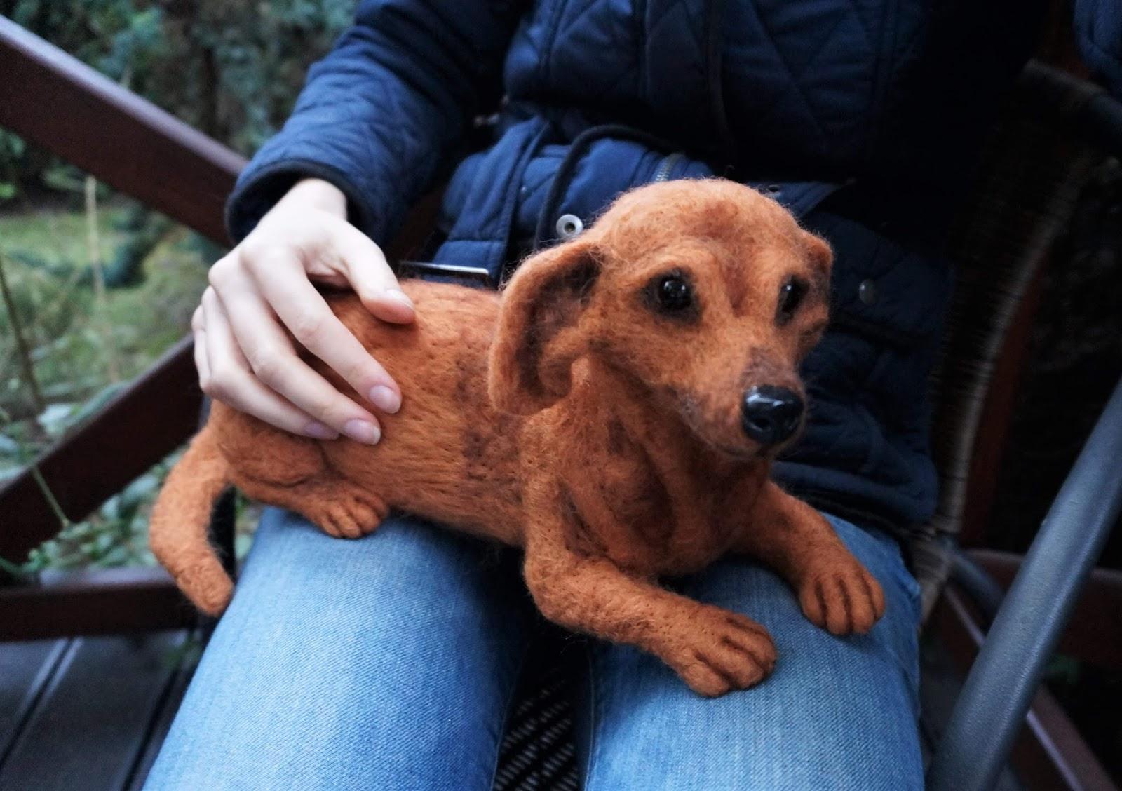 Norka - psi portret prawie naturalnych rozmiarów :)