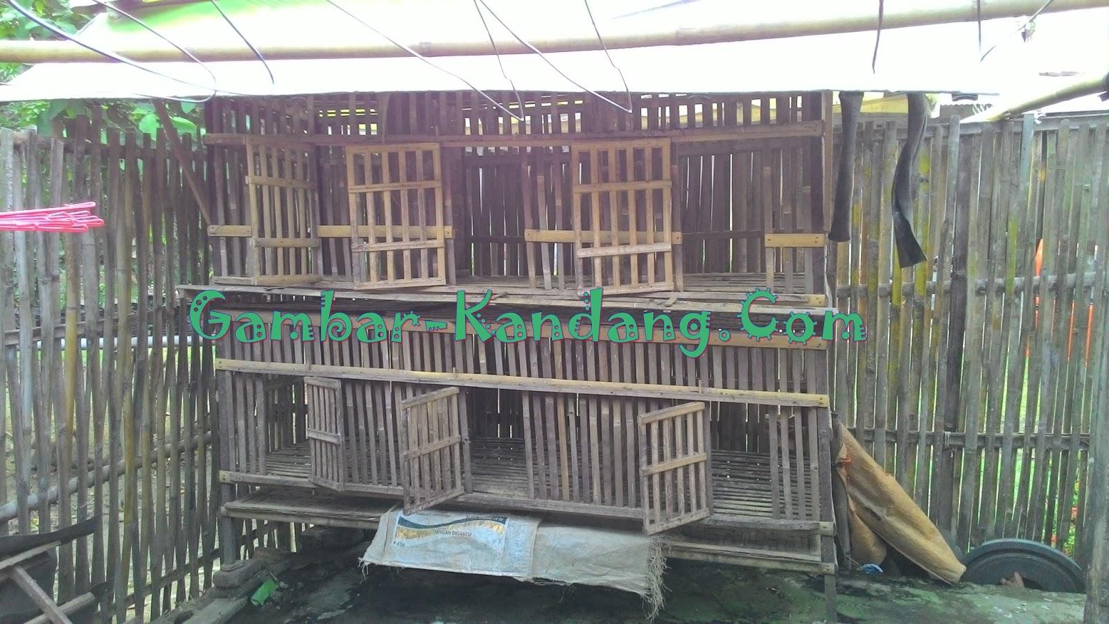 Model Kandang Tingkat Ayam Kampung