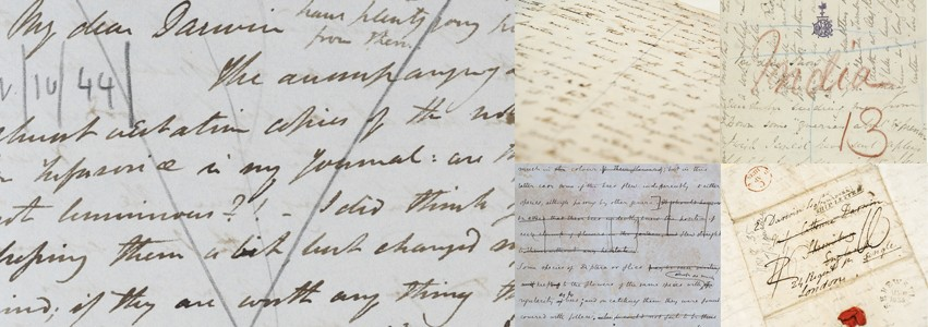 darwin correspondence project Darwin's correspondence provides us with an invaluable source of information, not only about his own intellectual development and social network, but about.
